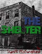 The Shelter - Book Cover