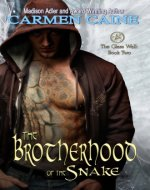 The Brotherhood of the Snake (The Glass Wall Book 2) - Book Cover
