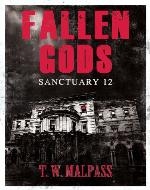 Sanctuary 12 (Fallen Gods Saga) - Book Cover