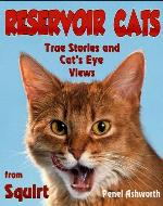Reservoir Cats - Book Cover