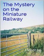 The Mystery on the Miniature Railway - Book Cover