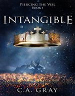 Intangible: A Clean and Wholesome Adventure Series (Piercing the Veil...