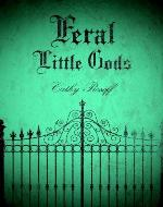 Feral Little Gods - Book Cover