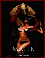 Malik: The Demon Fox - Book Cover