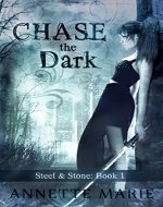 Chase the Dark (Steel & Stone Book 1) - Book Cover