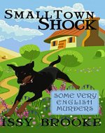 Small Town Shock - Book Cover