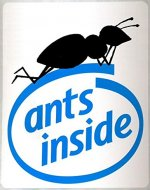 Ants inside: the truth about computers (Pisolo Books) - Book Cover
