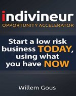 indivineur - Opportunity Accelerator: Start a low risk business TODAY, using what you have NOW - Book Cover
