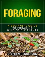 Foraging: A Beginners Guide to Foraging Wild Edible Plants (foraging, wild edible plants, foraging wild edible plants, foraging for beginners, foraging wild edible plants free,) - Book Cover