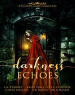 Darkness Echoes: A Spooky YA Short Story Collection - Book Cover