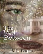 The Veil Between (The Dreamwalker Book 1) - Book Cover