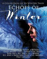 Echoes of Winter: A Wintery YA Short Story Collection - Book Cover