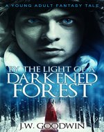 By The Light Of A Darkened Forest - Book Cover
