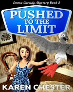 Pushed to the Limit (an Emma Cassidy Mystery Book 2) - Book Cover