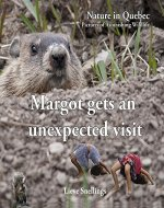Margot gets an unexpected visit - Book Cover