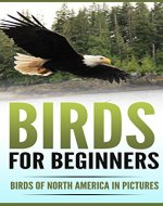Birds for Beginners: Birds of North America in Pictures - Book Cover