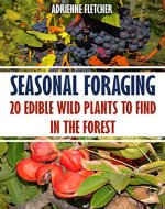 Seasonal Foraging: 20 Edible Wild Plants to Find In The Forest - Book Cover