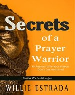 Secrets of a Prayer Warrior: 15 Reasons Why Your Prayers Don't Get Answered / Spiritual Warfare Strategies - Book Cover