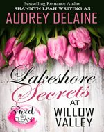 Lakeshore Secrets at Willow Valley (The McAdams Sisters at Willow Valley) - Book Cover