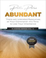 ABUNDANT: There Are Unlimited Resources At Your Command (Blessing Series Book 3) - Book Cover