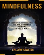 Mindfulness: Beginners Guide To Declutter Your Mind, Reduce Stress And Embrace The Present Moment (Mindfulness, Mindfulness For Beginners, Meditation, Mindfulness Practical Guide) - Book Cover
