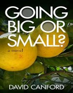 Going Big or Small?: Frank's Silver Gap Year, Living life to the full - Book Cover