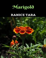 Marigold - Book Cover