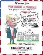 Musings From the Book of Moron: What goes on in the Trump White House - Book Cover
