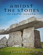 Amidst the Stones of Celtic Ireland - Book Cover