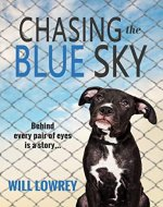 Chasing the Blue Sky - Book Cover