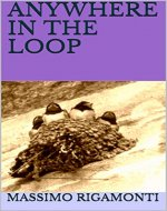 ANYWHERE IN THE LOOP (Stories Book 2) - Book Cover
