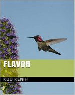 FLAVOR - Book Cover