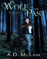 Wolf Of The Past: Family Lost - A Werewolf Romance (Spirit Of The Wolf Book 1) - Book Cover