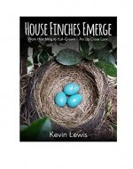 House Finches Emerge: From Hatchling to Full-Grown – An Up-Close Look - Book Cover