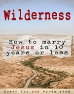 Wilderness - How to Marry Jesus in 10 Years or Less - Book Cover