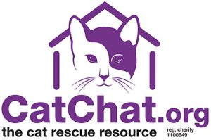 CatChat.org