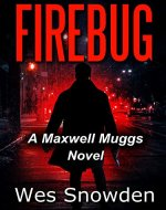 FIREBUG: A city burns while a psychopathic killer lurks in the shadows - Book Cover